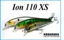 Ion 110 XS